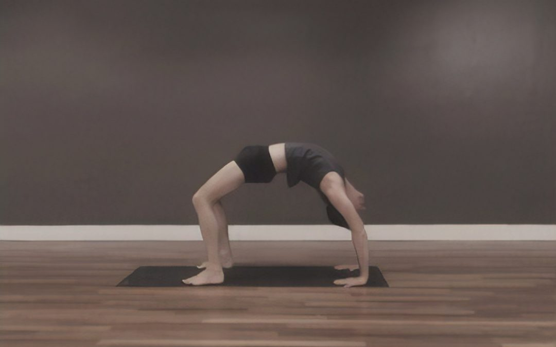 Ashtanga Workshop with Mark Samouelle